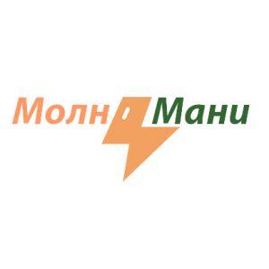 MolniMoney – заполнить заявку на кредит